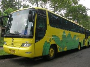bis kuning UI